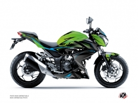 Kawasaki Z 300 Street Bike Airline Graphic Kit Green Blue