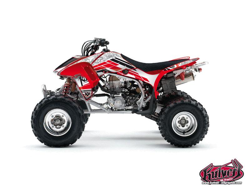 Honda 450 TRX ATV Spirit Graphic Kit
