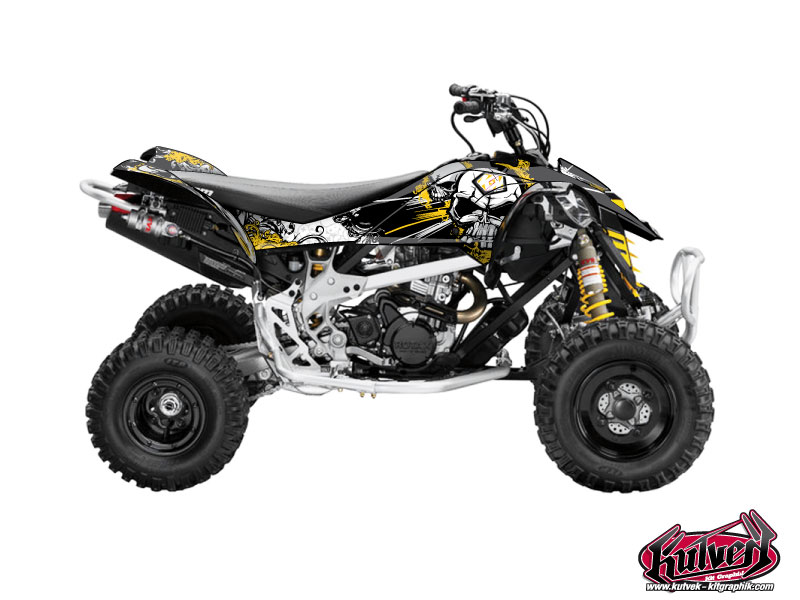 Can Am DS 450 ATV Trash Graphic Kit Black Yellow