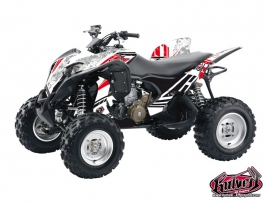 Honda 700 TRX ATV Spirit Graphic Kit